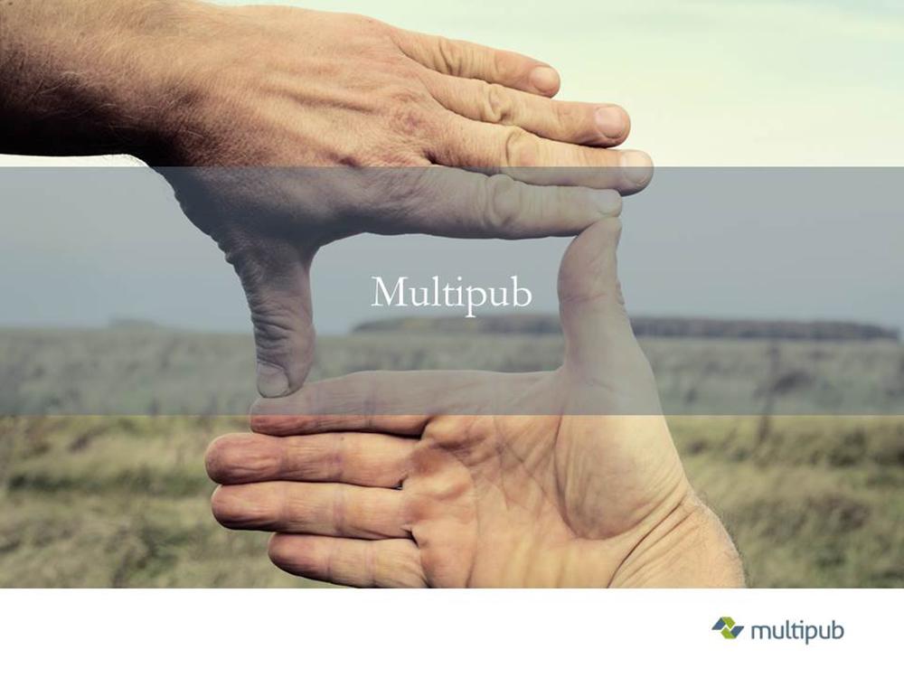 multipub demo